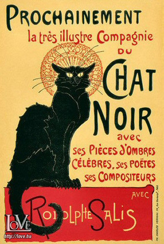 Chat Noir társkereső